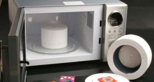 Microwave Kiln Reviews
