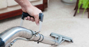 powerful steam cleaner reviews