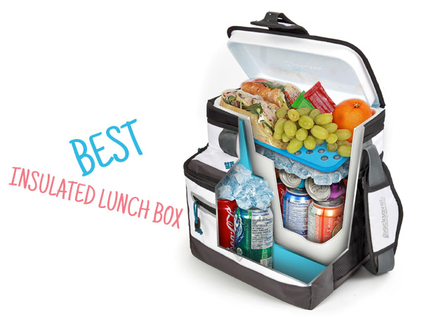 Insulated Lunch Box Reviews