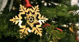 Christmas Ornament Brands Reviews