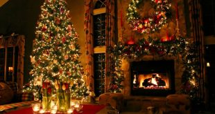 Christmas Indoor Tree Lights
