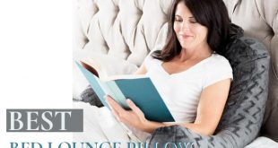 Bed Lounge Pillow Review