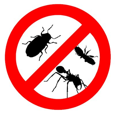 Pest Control And Removal