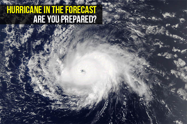 Hurricane in the Forecast