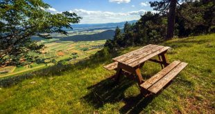Tips for an Eco-Friendly Picnic