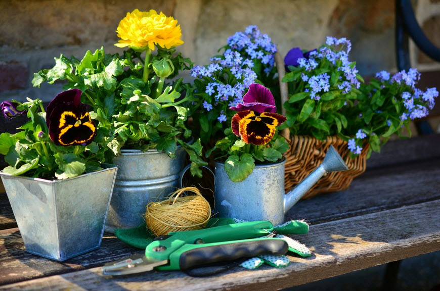 Tips to preparing your garden for the spring