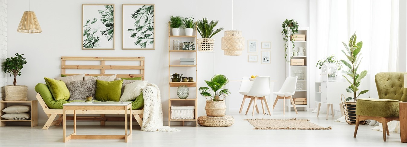 a real tropical feel into your home