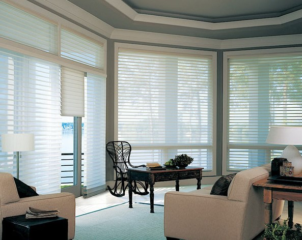 Impressive Residential Window Blinds