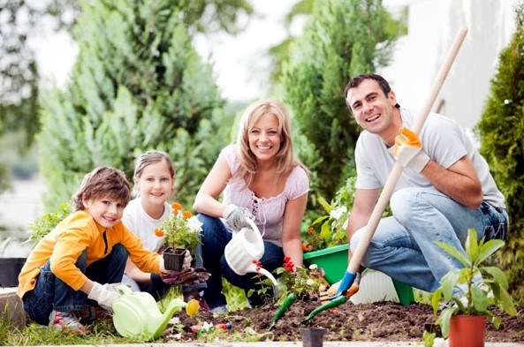 Landscaping with kids