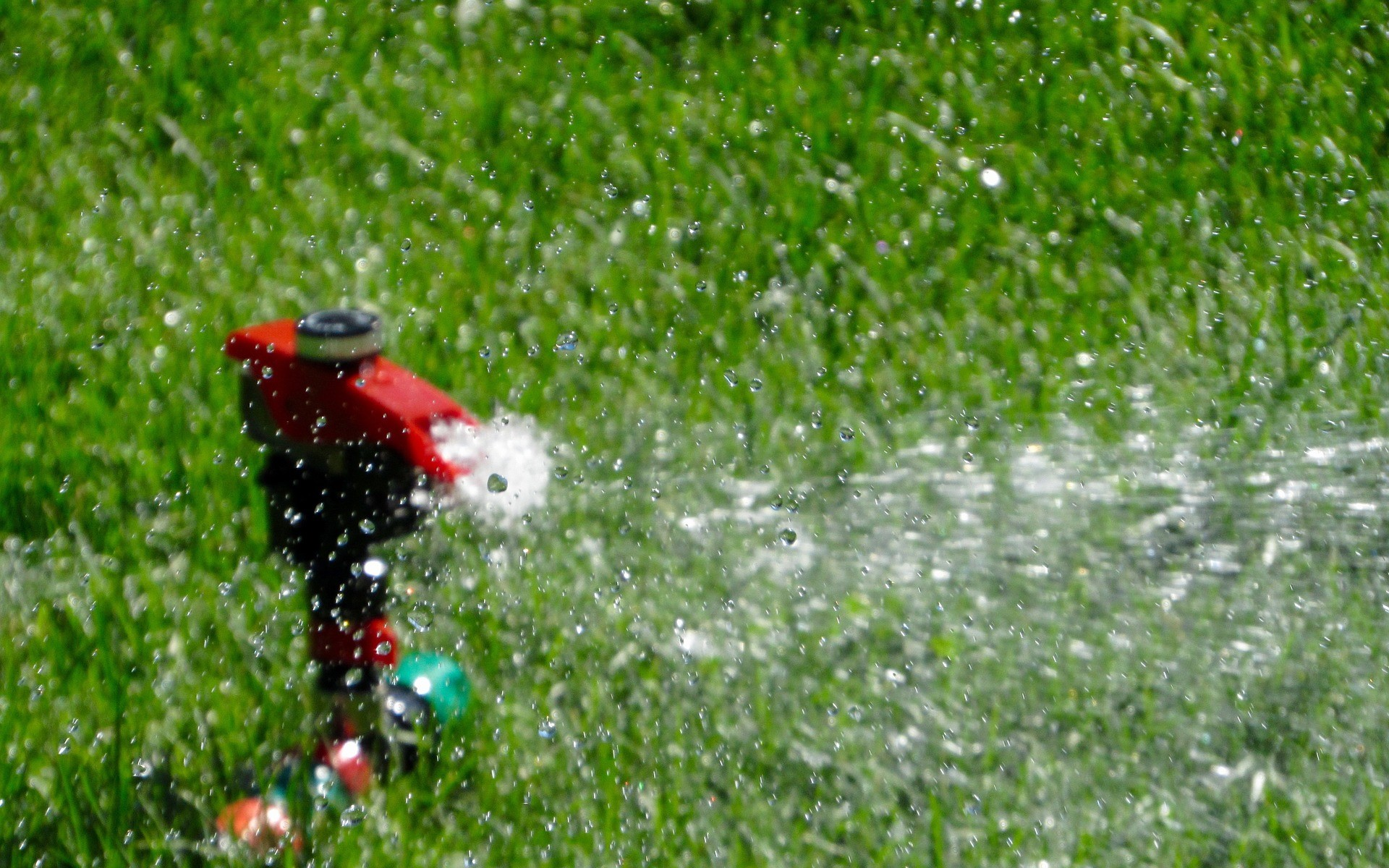 maintenance-of-the-lawn-with-irrigation-system