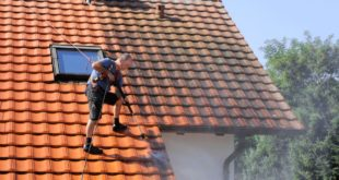 roof-cleaning-comparison