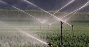 Water irriagation