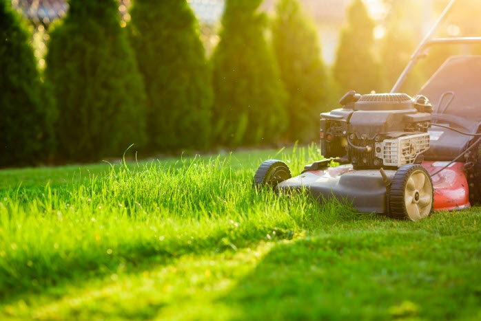 importance of lawn care