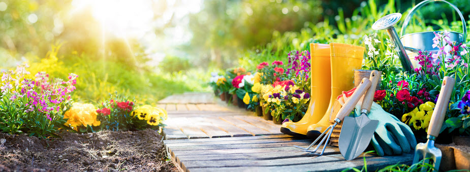garden path with boots and tools