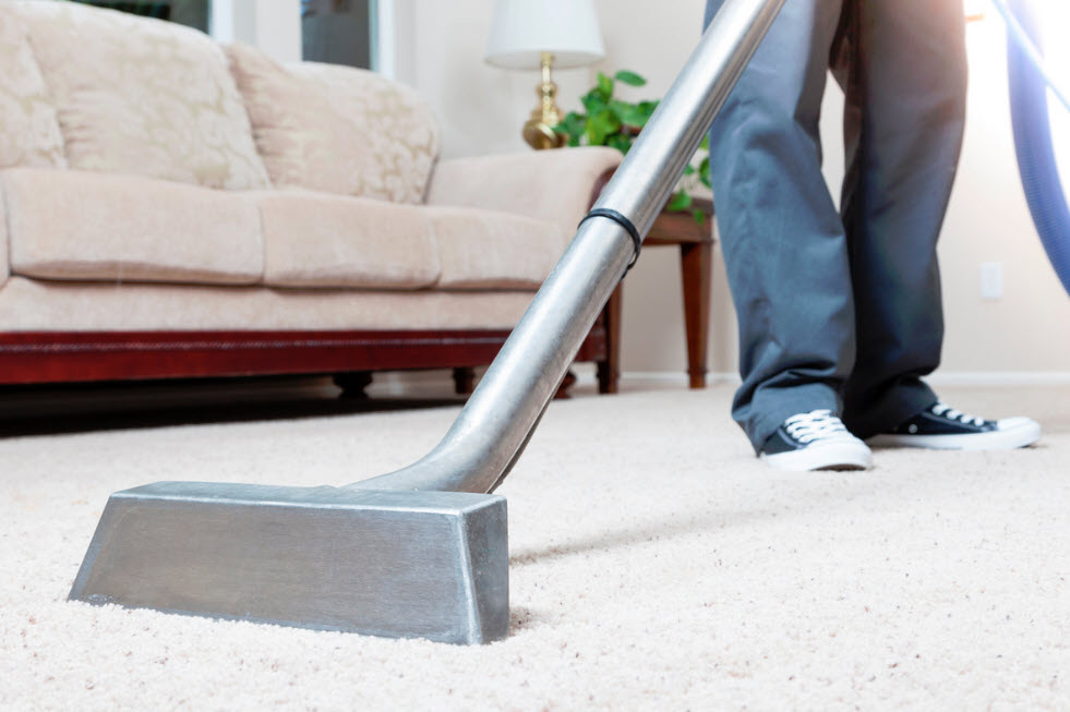 carpet cleaning concord for hire